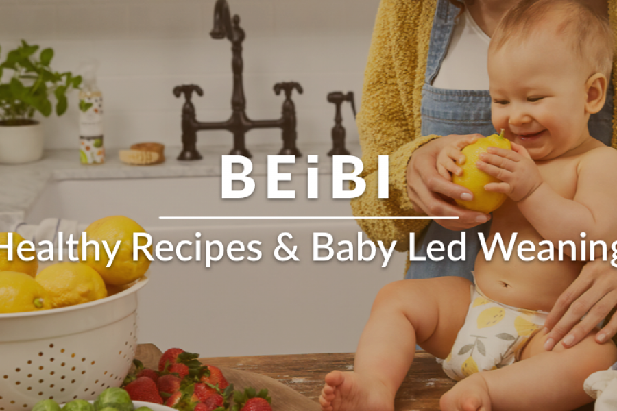 Beibi Healthy BLW Baby Recipes – New App Release